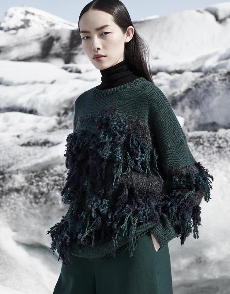 Glacial COS Fall-Winter 2015 Ad Campaign Fei Fei Sun (9)